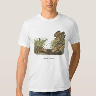American Woodcock, John Audubon Print T Shirt