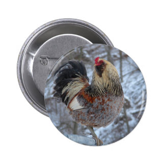 AMERICANA ROOSTER IN WINTER GIFTS PINBACK BUTTON