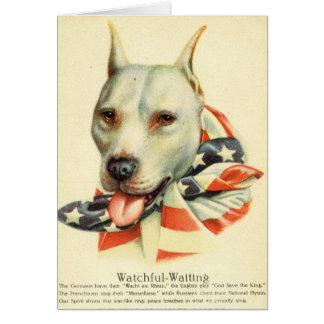 Americano bull terrier, postal antigua circa WWI Tarjeta De Felicitación