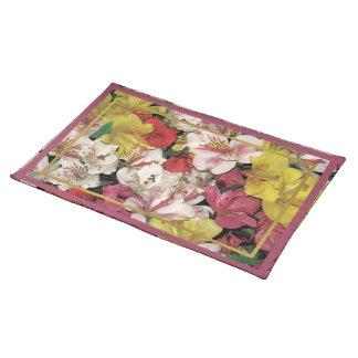 Americano colorido MoJo Placemats del ramo floral Manteles