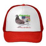 Americano de la paloma que compite con de los E.E. Gorro De Camionero