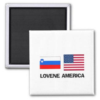 Americano esloveno imán cuadrado