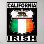 Americano irlandés de California Posters
