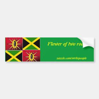 Americano-Jamaicano nativo Pegatina De Parachoque