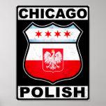 Americano polaco de Chicago Posters