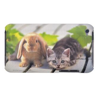 Americano Shorthair; es el más popular y la mayorí iPod Touch Case-Mate Protectores