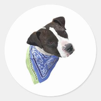 Americano Staffordshire Terrier-Aggie Pegatina Redonda