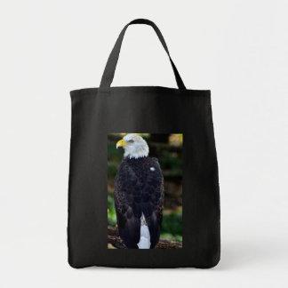 Américas Bird jpg Bolsa