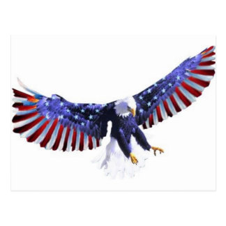 America's eagle postcard
