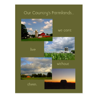 America's Farmlands 1 photo postcard