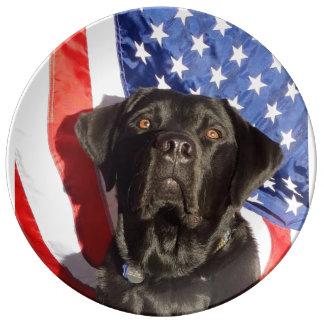 America's Favorite Dog Breed: The Labrador Retriev Dinner Plate