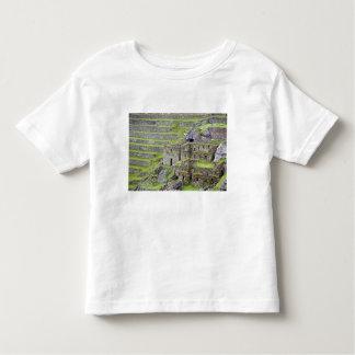 Americas, Peru, Machu PIcchu. The ancient 2 Toddler T-shirt
