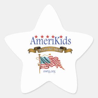 AmeriKids Star Stickers