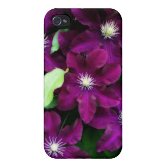 Amethyst Clematis iPhone 4/4S Cover