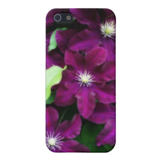 Amethyst Clematis iPhone SE/5/5s Cover