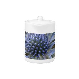 Amethyst eryngo (Eryngium amethystinum) Teapot