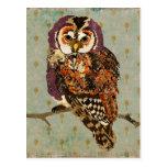 Amethyst Owl Blue Postcard