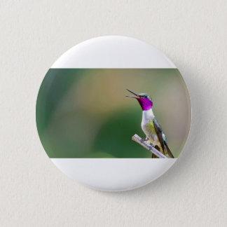 Amethyst Woodstar Hummingbird Button