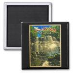 Amicalola Falls Georgia Magnets