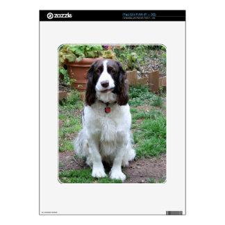 Amigo de la cubierta del iPad de Hank Skins Para iPad