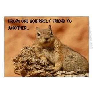 Amigo de Squirrely Tarjeta De Felicitación