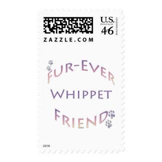Amigo de Whippet Furever