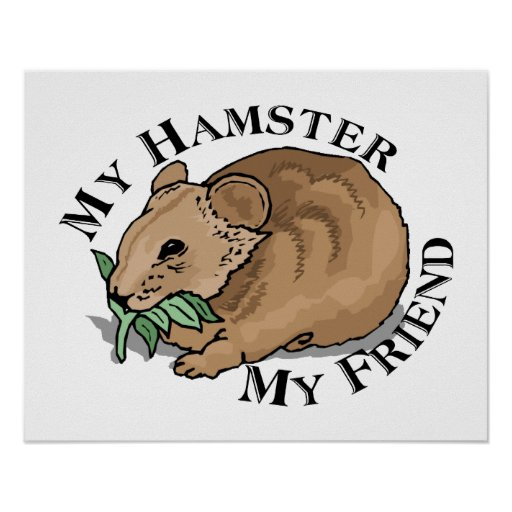 Amigo del hámster poster