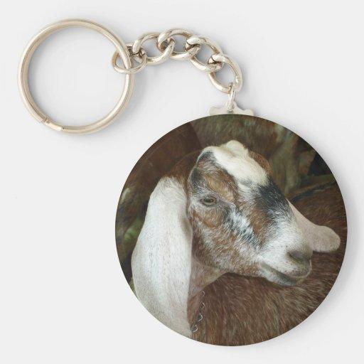 Amigo lindo de la cabra del calicó llavero
