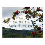 ¡Amigo, usted es Apple de mi ojo! Postal