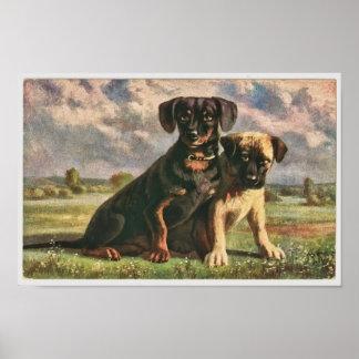 Amigos caninos poster