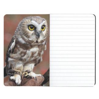 Amigos Cuadernos Grapados