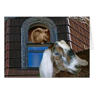 Amigos de la ardilla y de la cabra tarjeta de felicitación