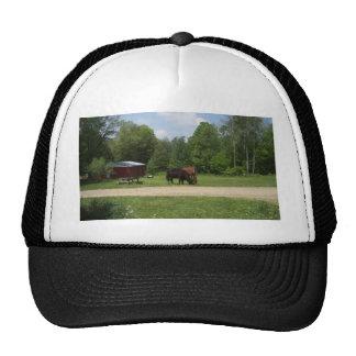 Amigos de la granja gorra