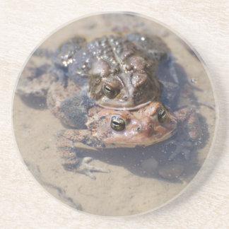 Amigos de la rana posavasos diseño