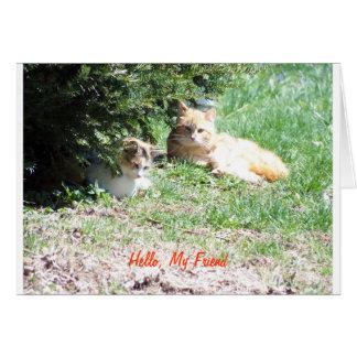 Amigos de los gatos, gema tarjeta pequeña