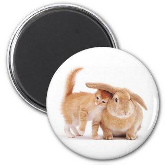 amigos del conejo de conejito del gatito cute_funn imán redondo 5 cm