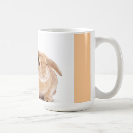 amigos del conejo de conejito del gatito taza