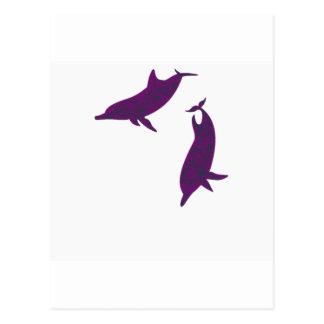 Amigos del delfín postales