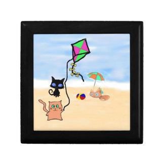 Amigos del gato que juegan en una playa de Sandy Caja De Regalo