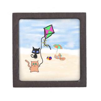 Amigos del gato que juegan en una playa de Sandy Caja De Regalo De Calidad