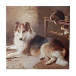 Amigos - gatito del perro - perrito azulejo cuadrado pequeño