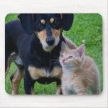 Amigos lindos del gato y del perro tapete de ratón