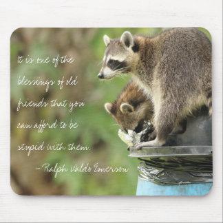 Amigos y mapaches de la cita de la amistad de las tapete de ratón