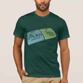 Amin as Am Americium  and In Indium T-Shirt