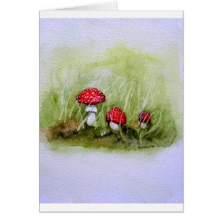 Aminita Muscaria mushroom Card