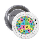 Amino Acid Base Sequence Table Diagram Pin