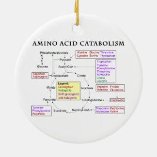 Amino Acid Catabolism Diagram Ceramic Ornament