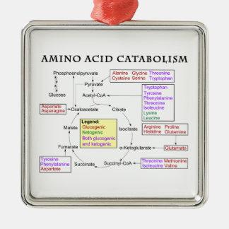 Amino Acid Catabolism Diagram Metal Ornament