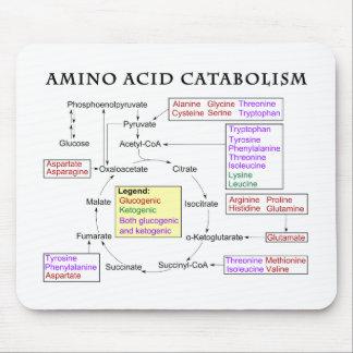 Amino Acid Catabolism Diagram Mouse Pad