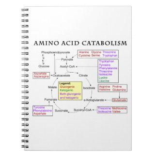 Amino Acid Catabolism Diagram Spiral Notebook